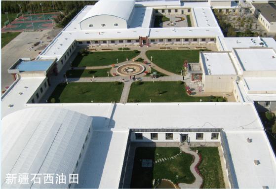 新疆西石油田钢结构屋面防水