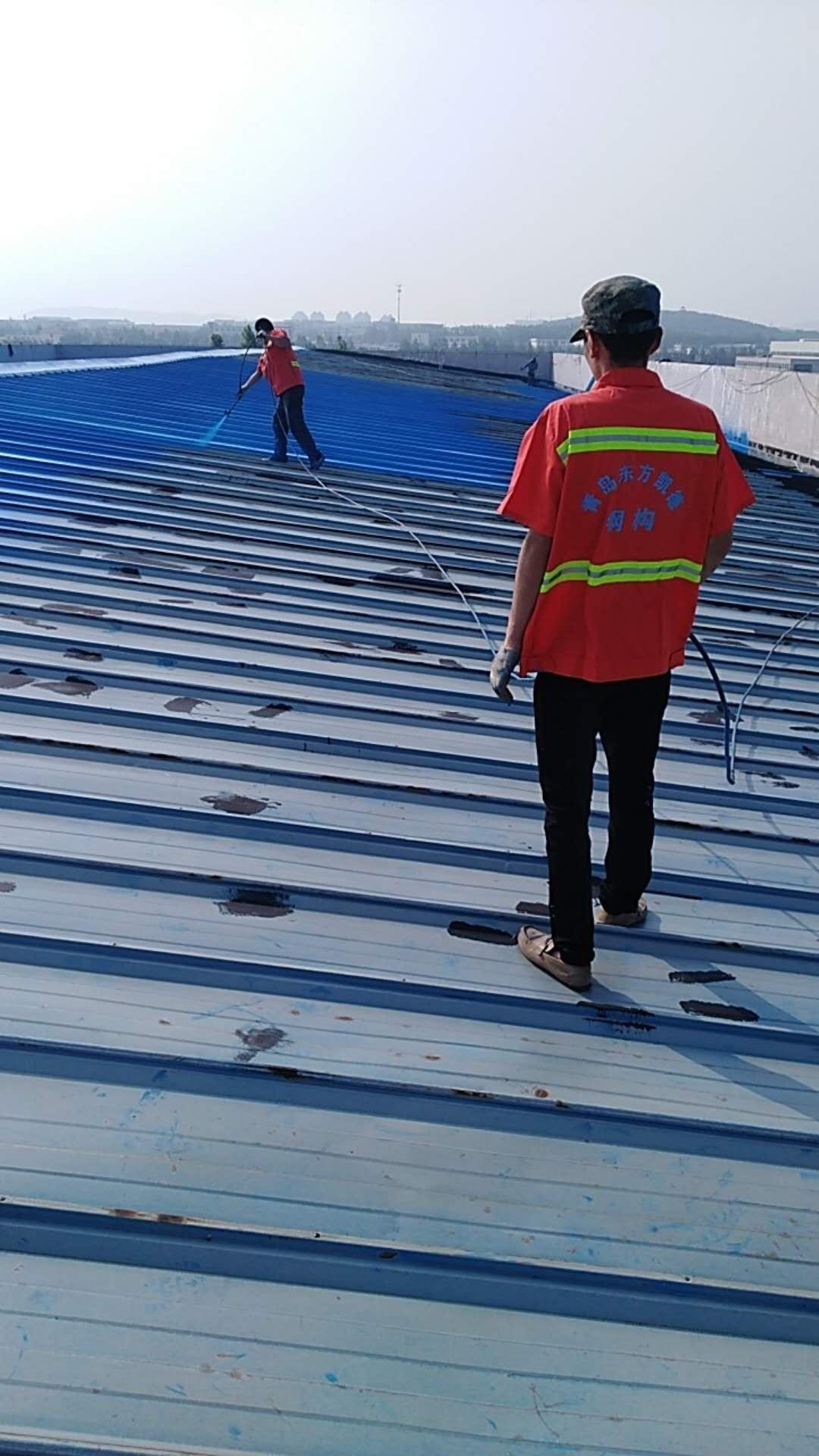 青岛东方凯德钢结构厂房 彩钢瓦屋面防水防腐施工中照片